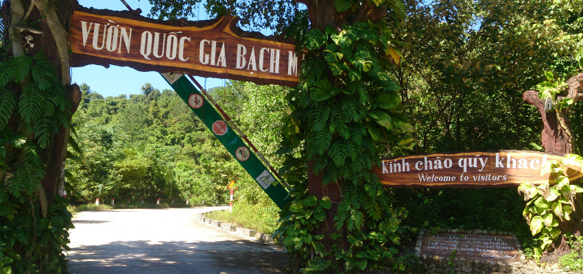 Explore Bach Ma National Park